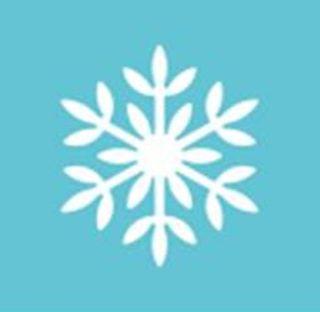 Galcial Snowflake m232313